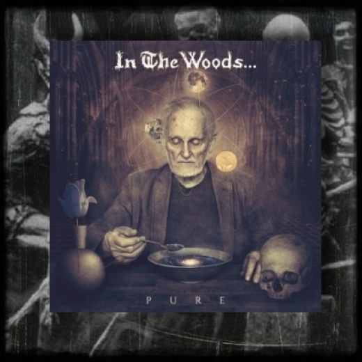 In The Woods - Pure CD
