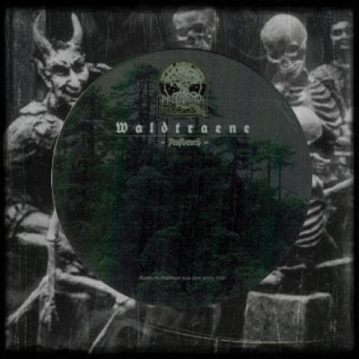 Waldtraene - Aufbruch (Metallbox) CD