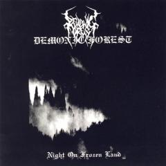 Demonic Forest - Night on Frozen Land CD