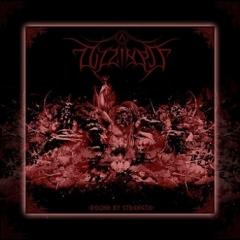 Dizziness - Bound by Strength CD