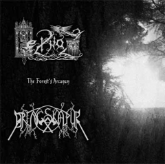 Drengskapur / Heilnoz - The Forests Arcanum CD