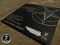 BLUTSTURM - Hate Us! Vinyl 10+ CD + Poster