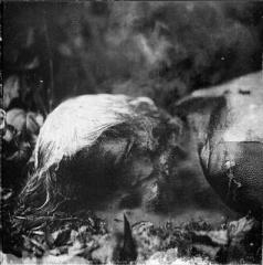 Skogen/Ciemności - Split CD